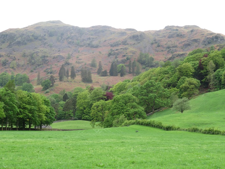 Grasmere - © William Mackesy