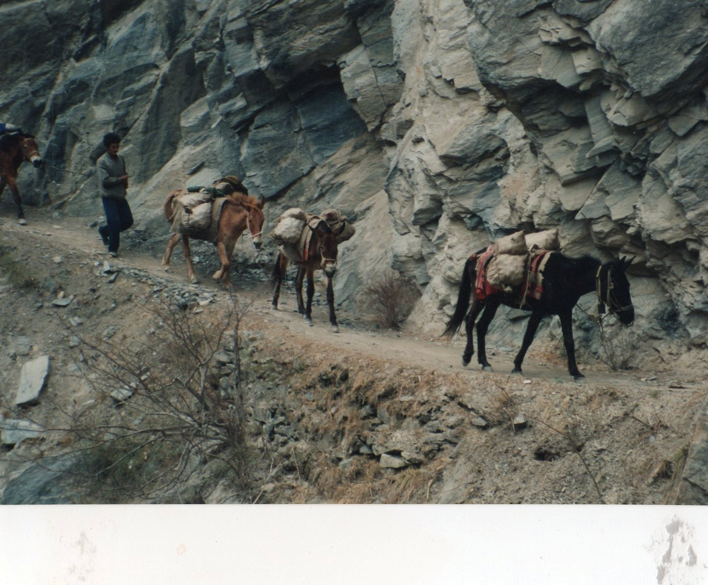 Tiger Leaping Gorge, old days as mule trail - © William Mackesy
