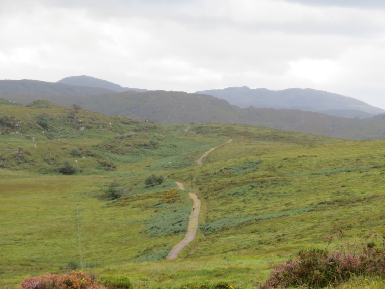 Killarney National Park: On the high hills - © William Mackesy