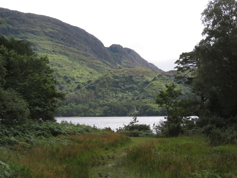Killarney National Park: Torc mountain flank from Muckross Lake - © William Mackesy