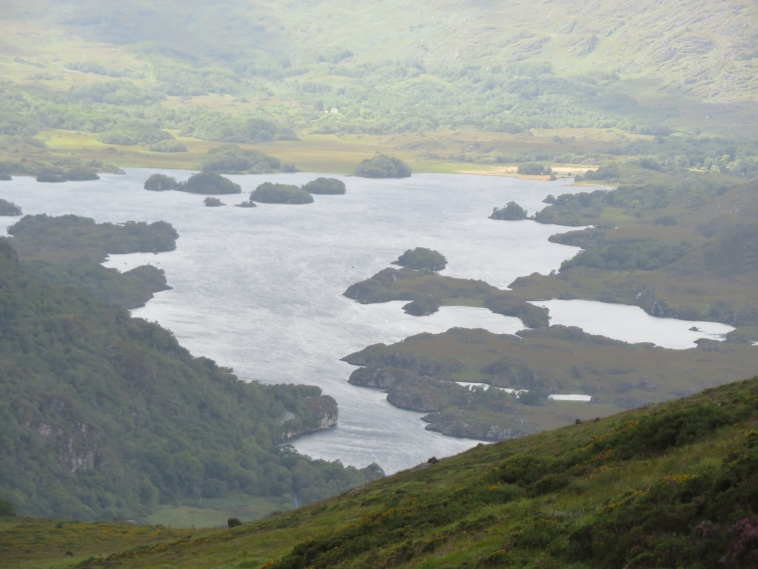 Killarney National Park: Upper Lake from Torc mountain - © William Mackesy