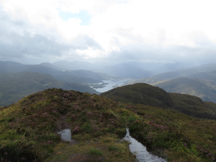 Killarney National Park: Upper Lake from Torc mountain summit - © William Mackesy