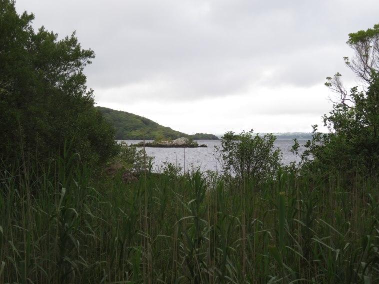 Killarney Lakes: © William Mackesy