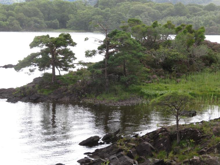 Killarney Lakes: Muckross Lake - © William Mackesy
