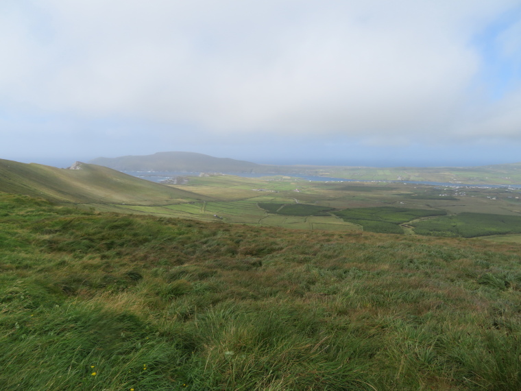 Valentia Island from Ballynahow Hill - © William Mackesy