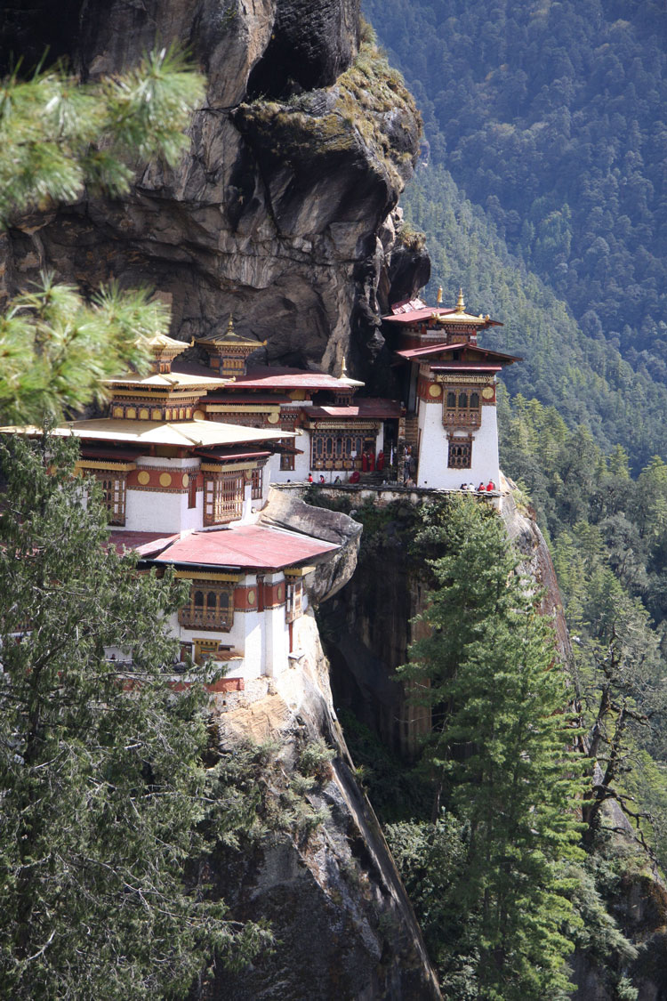 Tiger's Nest - © By Velma Roberts