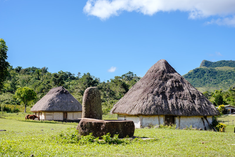 Traditional homes, Viti Levu - © Rob Rickman