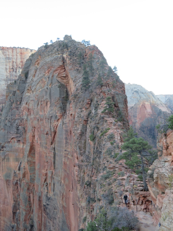 "West Rim Trail: Impossible Angel""s Landing ridge - © William Mackesy"