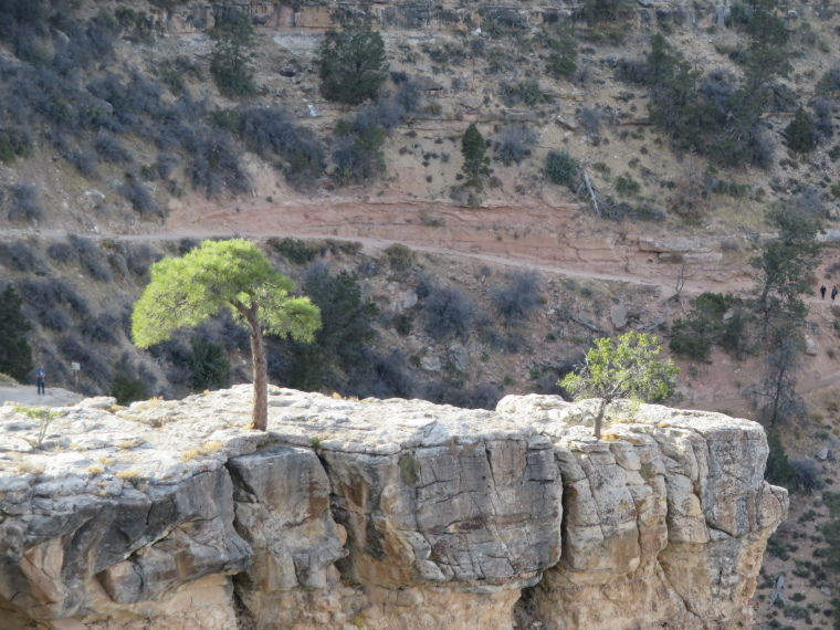USA SW: Grand Canyon, Rim Trails, Bright Angel Trail, very top, Walkopedia