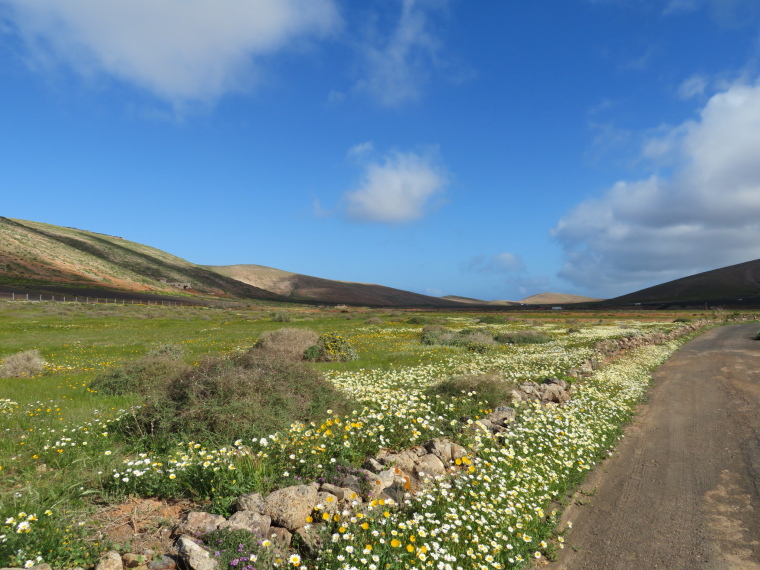 North up valley from Teguise - © William Mackesy