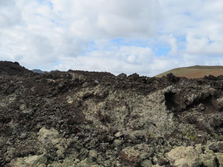 Spain Canary Islands: Lanzarote, Caldera Blanca , Lichen appearing, Walkopedia