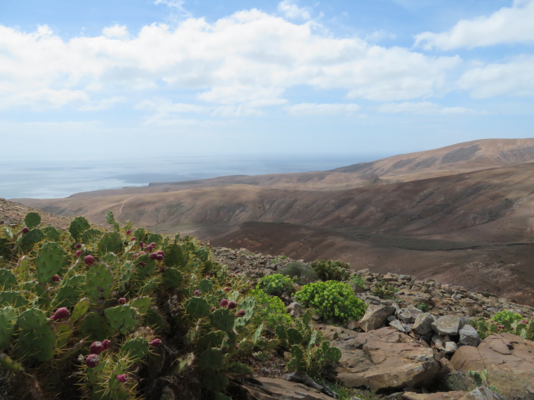 Spain Canary Islands: Lanzarote, Femes area, West from Lomo del Pozo, Walkopedia