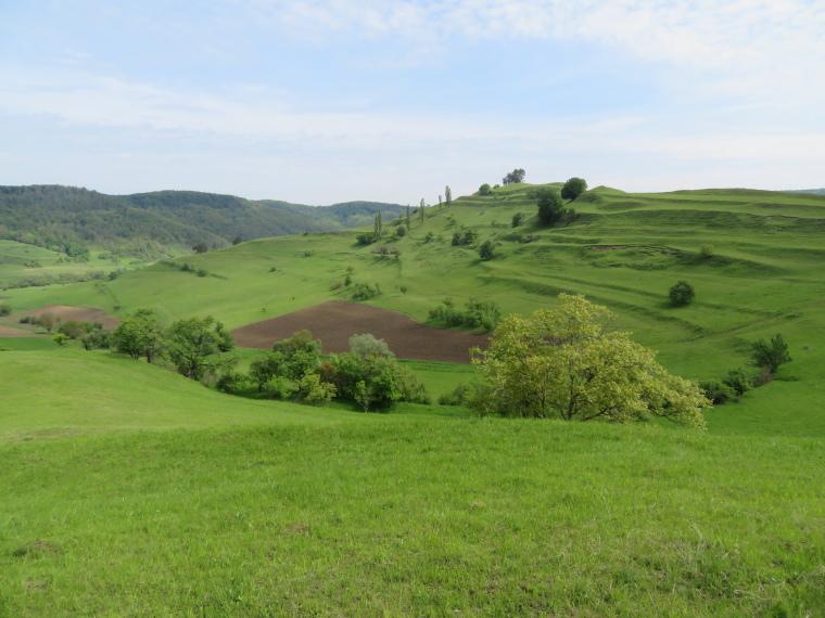 Romania Transylvania, Transylvania, From Copsa mare, Walkopedia