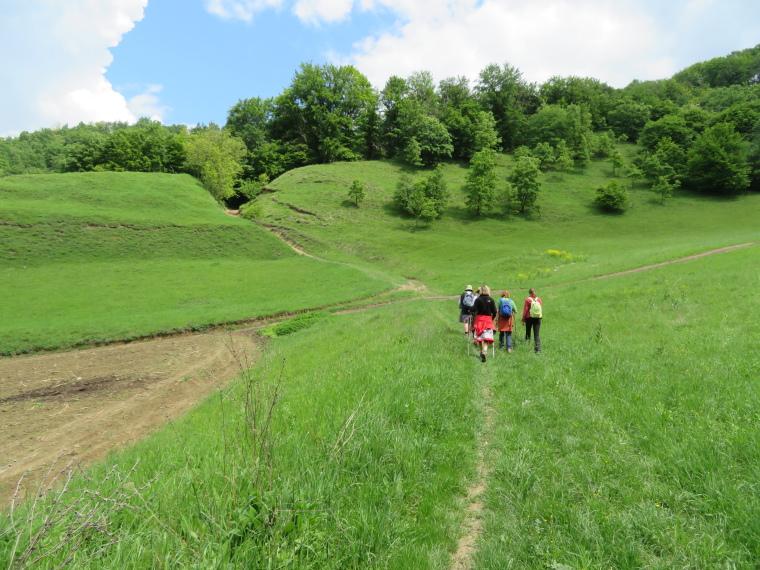 Transylvania: Malancrav, first walk - © William Mackesy