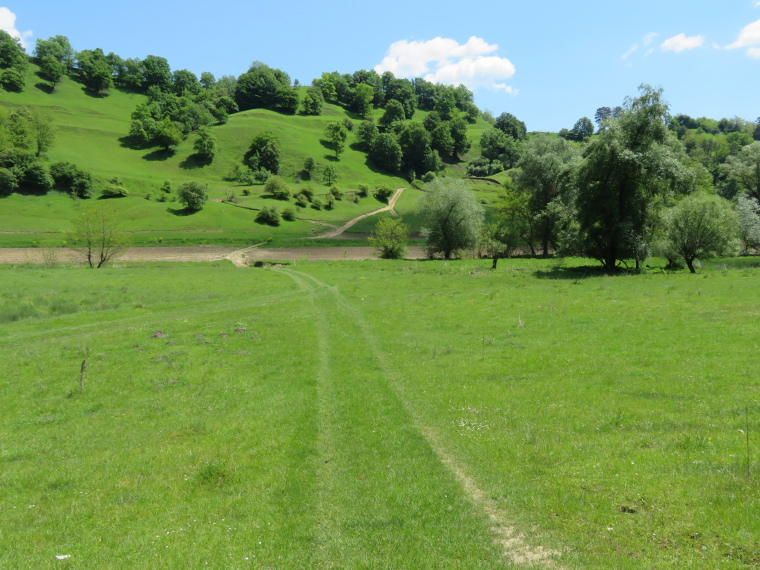 Transylvania: Malancrav walk 2 - © William Mackesy