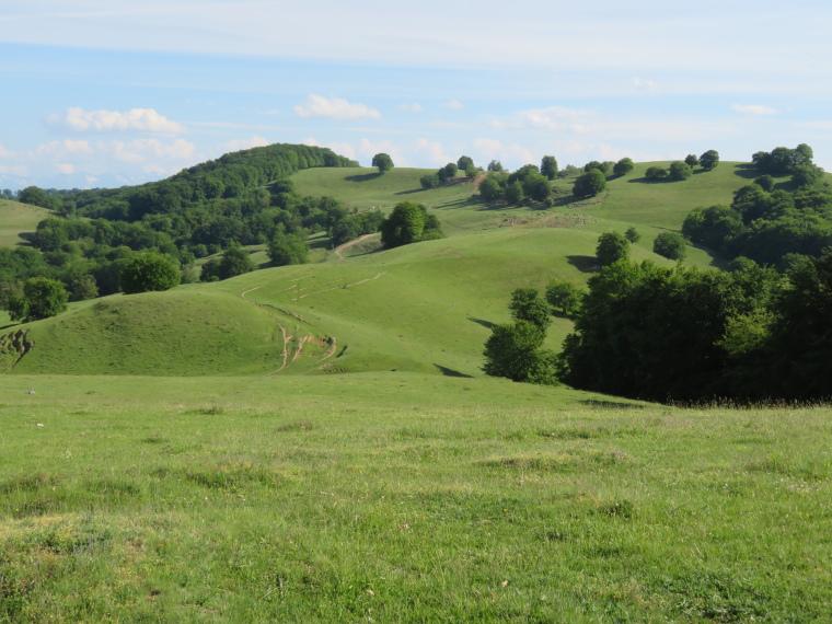 Transylvania: The ridge west of Malancrav - © William Mackesy