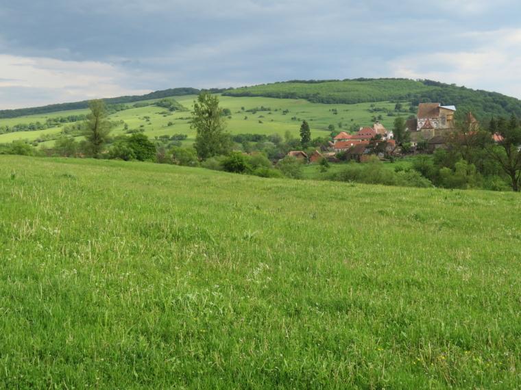 Transylvania: Roades - © William Mackesy