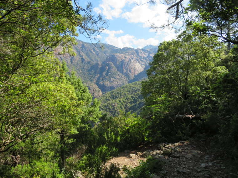Spelunca Gorge: Path down into gorge - © William Mackesy