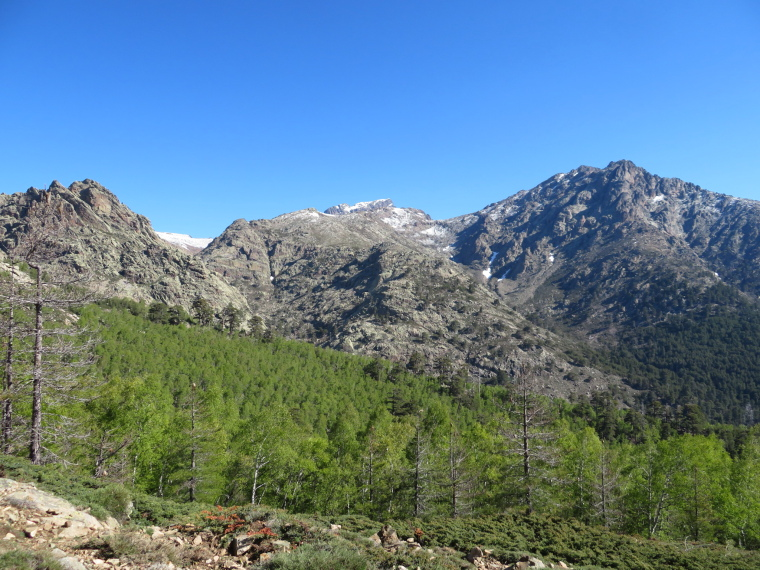 France Corsica: Northern Highlands, Golo Valley,  Across Golo valley to high mountains from near Col de Vergio, Walkopedia