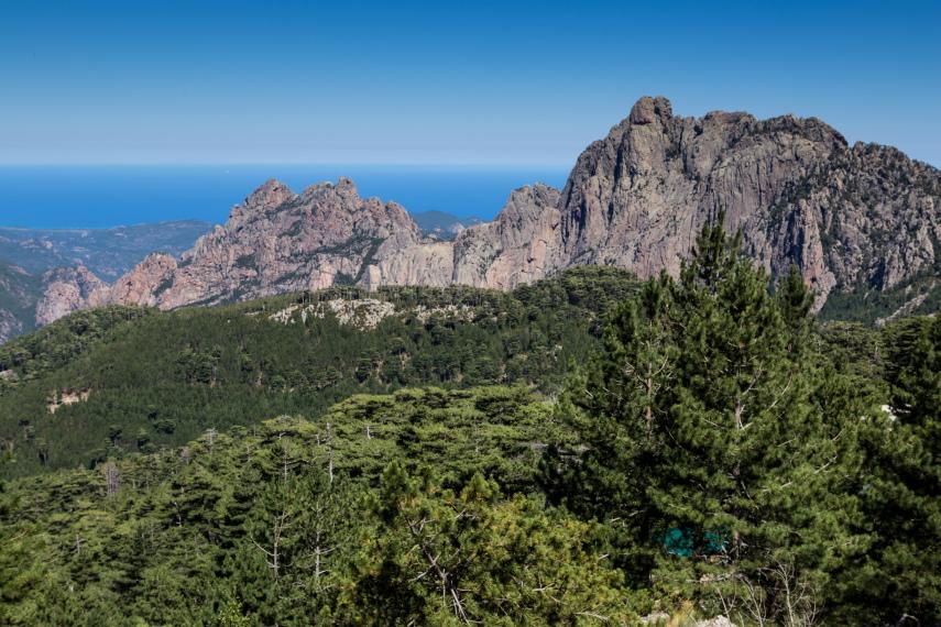 Cucuruzzu, Capula en Col de Bavella  - © flickr user Carolien Coenen 7