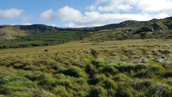 Ireland Kerry/Cork, Ireland's SW Peninsulas, Beara Way approaching Knocknagorraveela ridge, east-central Beara,, Walkopedia
