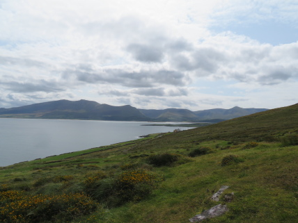 Ireland's SW Peninsulas: Dingle - Beenoskee (L) to Slievanea from Brandon Point - © William Mackesy