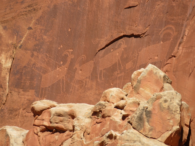 USA SW: Capitol Reef, Capitol Reef , petroglyph near Fruita, Walkopedia