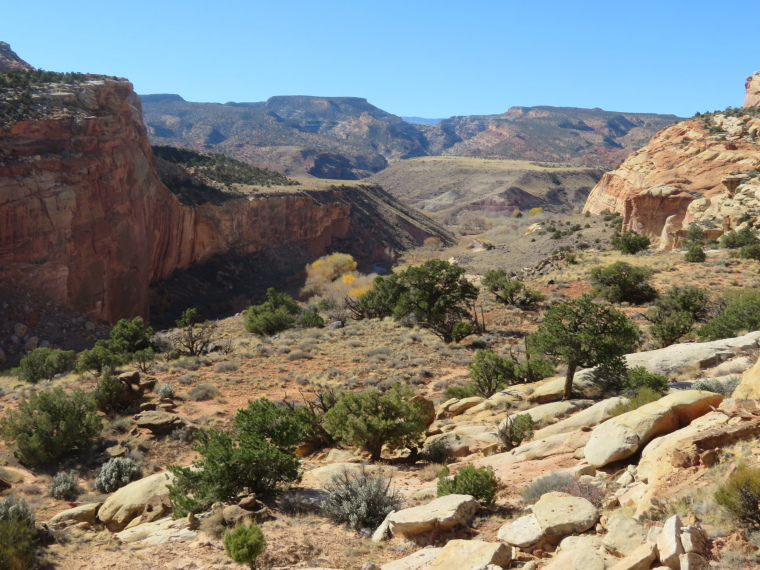 USA SW: Capitol Reef, Capitol Reef , View towards Fruita from ridge above Hickman bridge, Walkopedia
