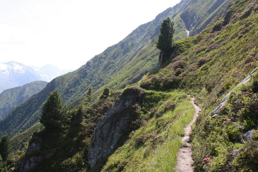 Austria Zillertal Alps, Zillertal Alps, Berliner Hohenweg, Walkopedia