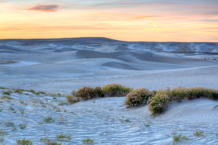 Great Basin Divide, Wyoming: Killpecker Dunes - © Flickr user Bureau of Land Management