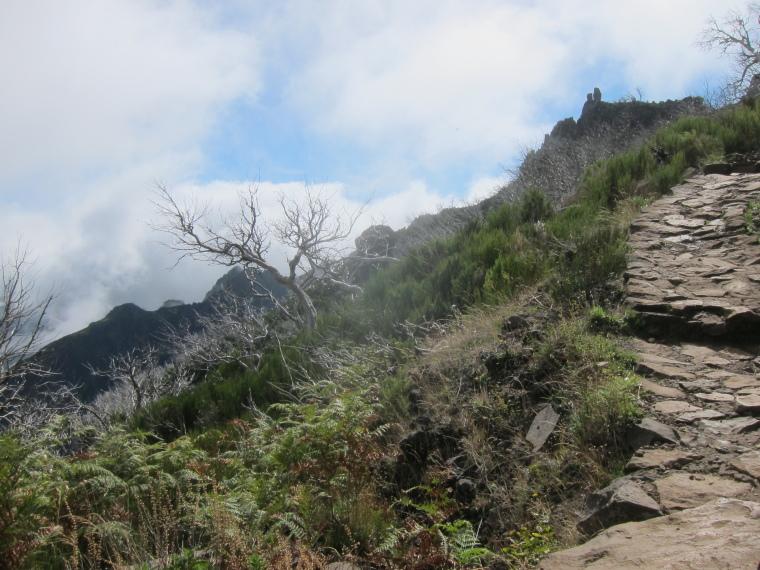 Pico Ruivo from Achado do Texeira: Ruivo ascent - © William Mackesy