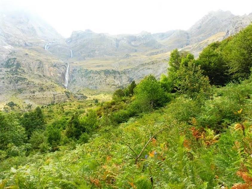 Valle de Pineta - © Rupert de Borchgrave