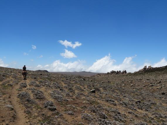 Sanetti Plateau: © William Mackesy