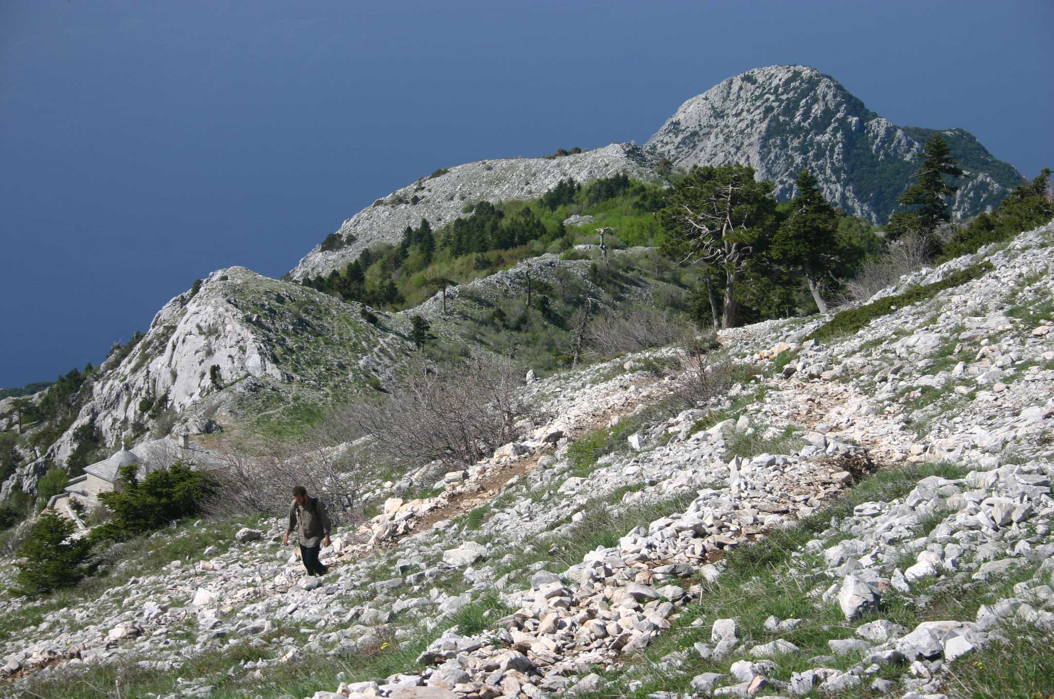 Mount Athos: Mt Athos - Above Panaghias - © William Mackesy