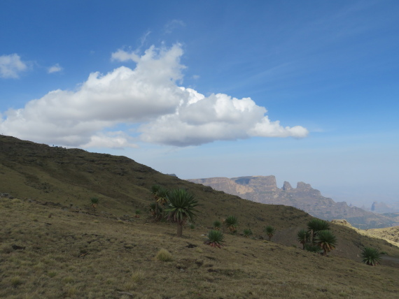 Ethiopia Simien Mts, Mt Buahit, High slopes, Walkopedia