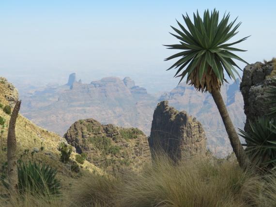 Ethiopia Simien Mts, Imet Gogo, Northish from near Imet Gogo, Walkopedia