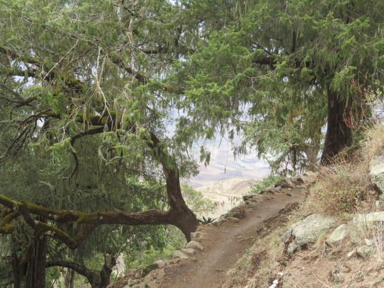 Ashetan Maryam: Path to fields beyond - © William Mackesy