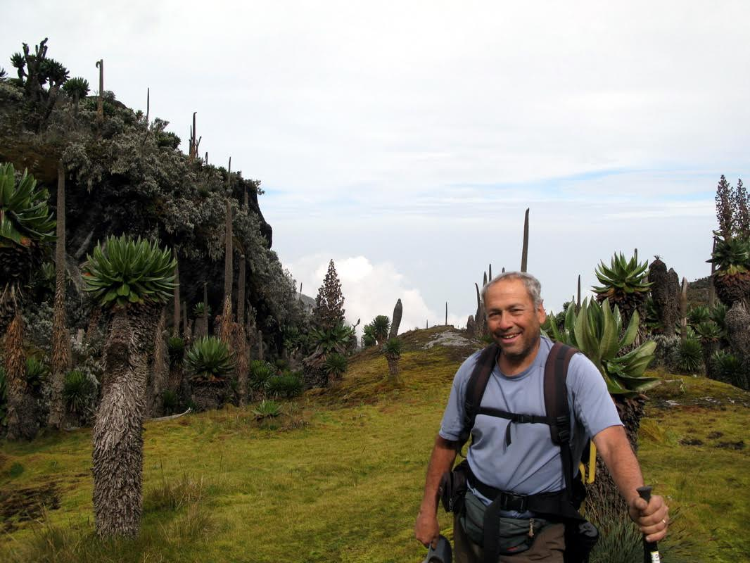 Rwenzori Mountains: Charlie at Freshfield Pass, Congo in background