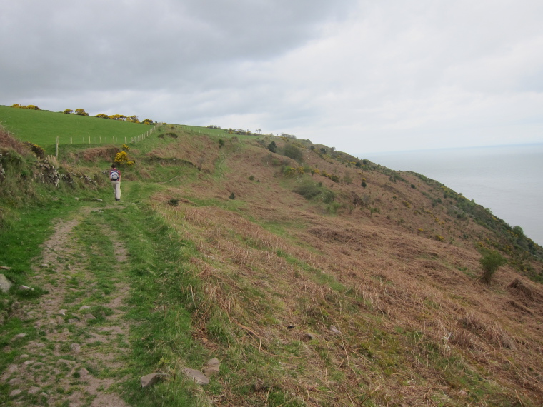 United Kingdom England South-west Exmoor, Exmoor, Coastal path west of Minehead, Walkopedia