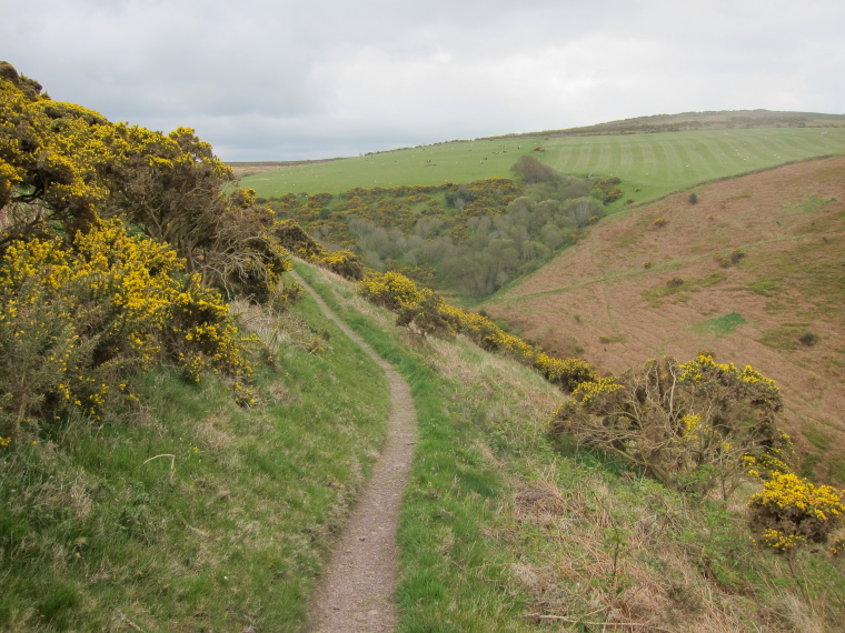 United Kingdom England South-west Exmoor, Exmoor, In hills west of Minehead, Walkopedia