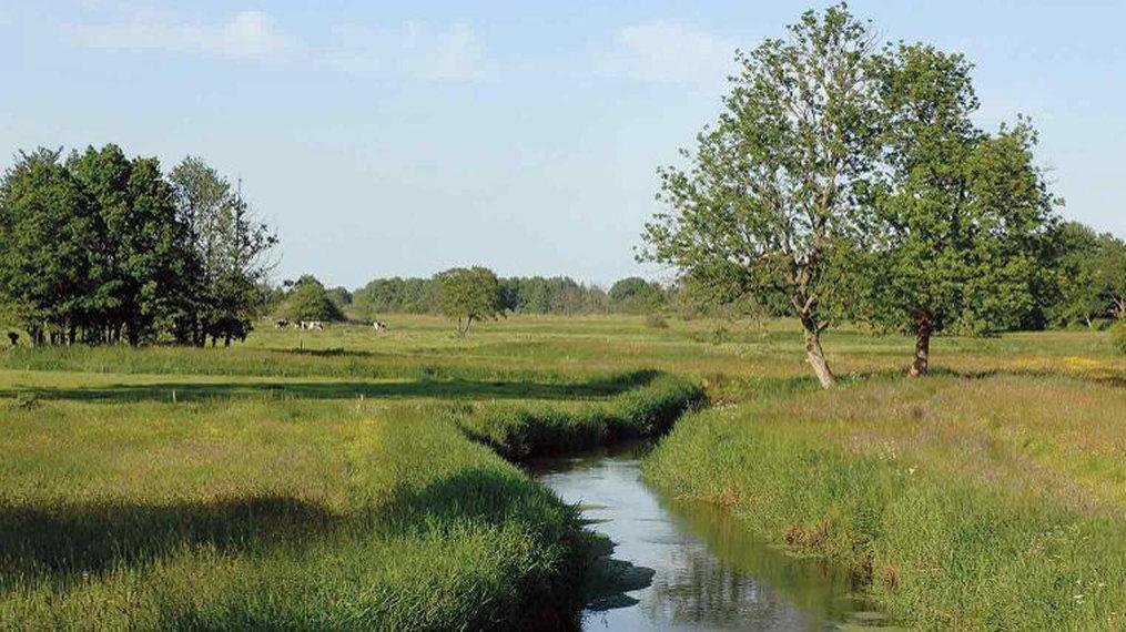 River Aa basin, province of Drente - © Hans Plas