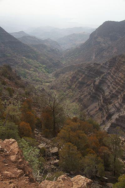 Goda Mountains: Goda Mountains - Foret du Day  - © Wikimedia user Singlab