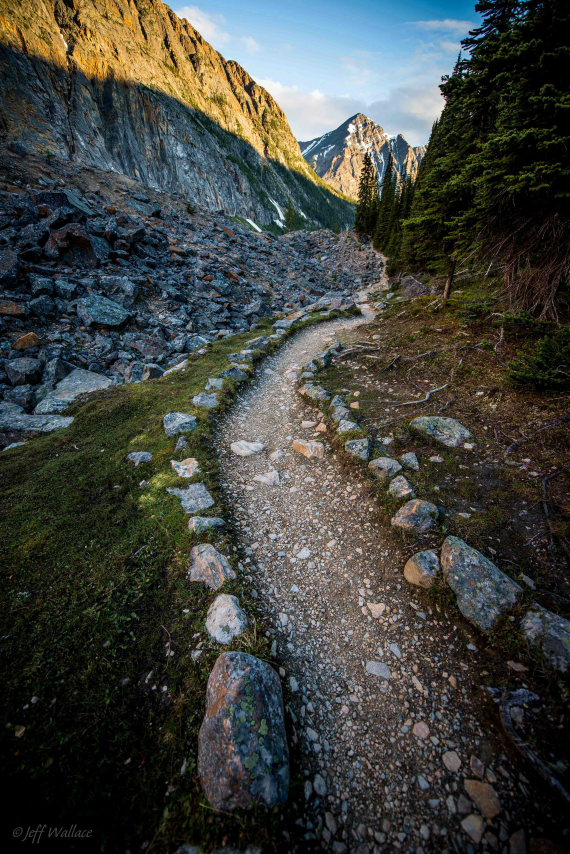 Cavell Meadows and Path of Glacier Trail: Cavell Meadows Trail - © Flickr user Jeff Wallace