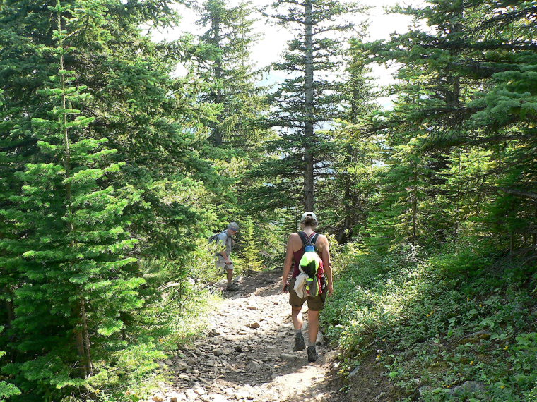 Canada Alberta: Jasper NP, Sulphur Skyline, Sulphur Skyline Trail, Walkopedia