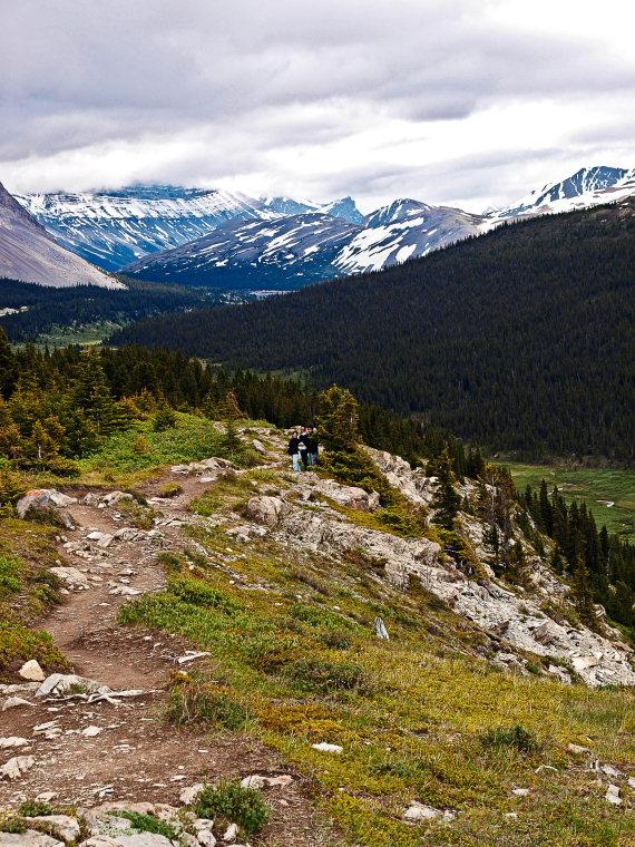 Wilcox Pass: Wilcox Path 2 - © Flicker user cai~cai~