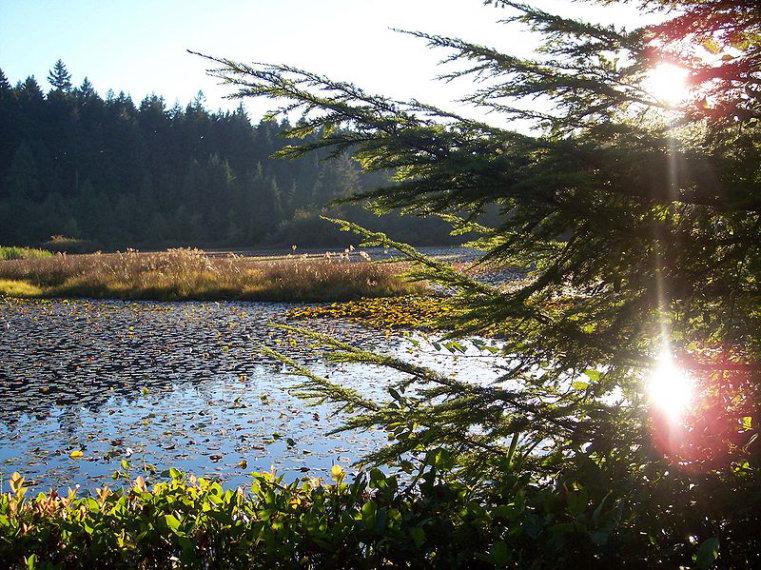 Beaver Lake to Jacques Lake: Beaver Lake - © wiki user Bobanny