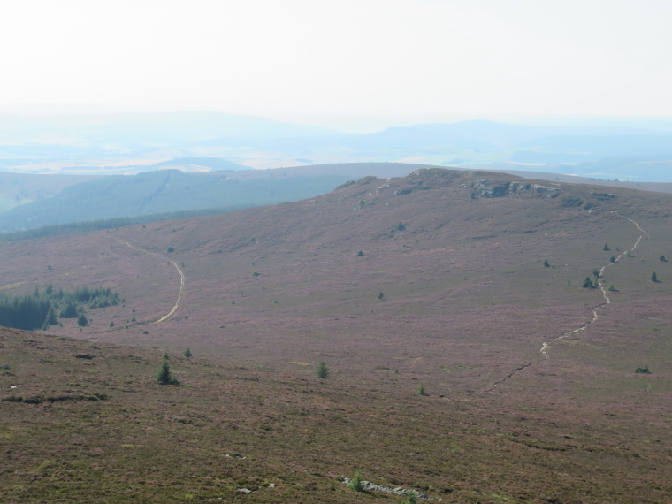 United Kingdom Scotland Aberdeenshire, Bennachie, West Bennachie ridge from Oxen craig, Buchan Way to left, Walkopedia