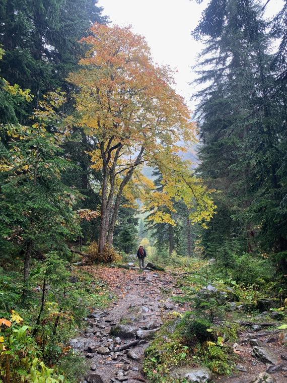 Georgia Gt Caucasus Svaneti, Becho Valley, , Walkopedia