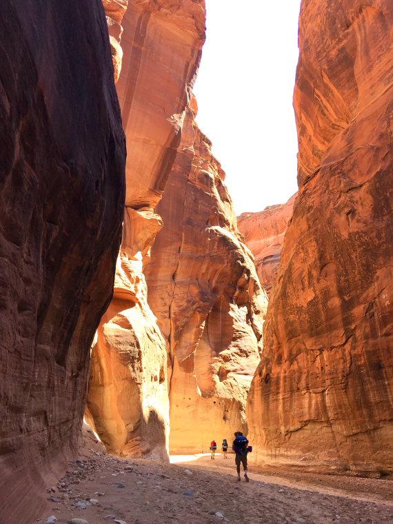 USA SW: Vermilion Cliffs, Vermillion Cliffs, Coyote Buttes , Paria Canyon , Walkopedia
