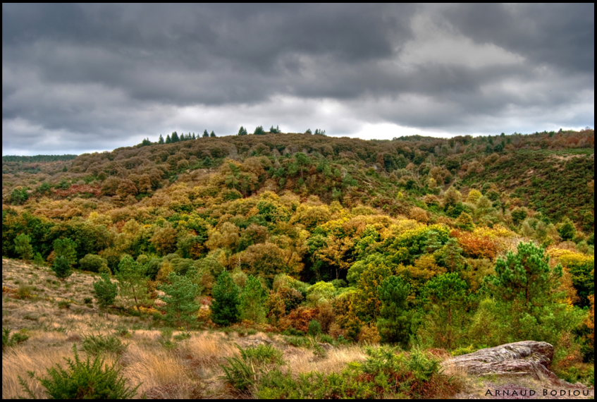 France Brittany, Forest of Paimpont; Val sans Retour, Legendes d'automne, Walkopedia